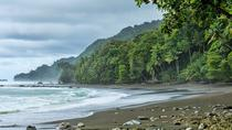 Corcovado National Park One Day Tour From San Jose, San Jose, Attraction Tickets