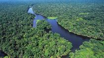 Tortuguero National Park One Day Tour, San Jose, Day Trips