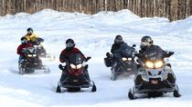 Guided Snowmobile Excursions in Northwest Wisconsin, Wisconsin, Ski & Snow