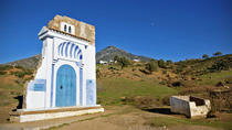 Full-Day One-Way Private Tour to Chefchaouen via Volubilis from Fez, Northern Morocco, Private...