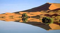 Merzouga 4X4 Half-Day Tour with Lunch, Marrakech, Half-day Tours