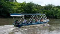 Palo Verde River Eco-Tour from Tamarindo, Tamarindo, Day Cruises