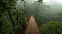 Private Full-Day Trip to Monteverde Cloud Forest , Liberia, Private Day Trips