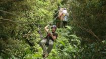 Zipline, Horseback Riding and Hot Springs Combo Tour in Guanacaste, Tamarindo, Nature & Wildlife