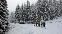 The Black Peak - Vitosha Mountain Snowshoeing Day Tour from Sofia, Sofia, Ski & Snow