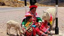 Cusco to Puno via Andahuaylillas and Raqch'i, Cusco, Day Trips