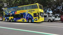 48hr Hop On Hop Off Pass including Devonport Ferry, Auckland, Ferry Services