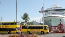 Landausflug in Auckland: Hop-on-Hop-off-Tour mit dem Bus, Auckland, Ports of Call Tours