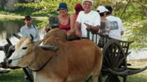 Half-Day Ox Cart and Floating Villages Tour, Siem Reap, Cultural Tours