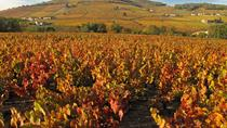 Private Tour: Cycling the Beaujolais with Wine Tasting from Lyon, Lyon, Private Sightseeing Tours