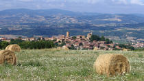 Private Wine Tour of Beaujolais Chateaux with Tasting from Lyon , Lyon, Private Sightseeing Tours