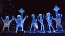 The Magic Flute at the Metropolitan Opera House, New York City, Concerts & Special Events
