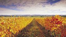 Custom Private Tour: Mornington Peninsula Winery Tour