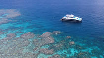Calypso Outer Great Barrier Reef Cruise from Port Douglas, Port Douglas, Snorkeling