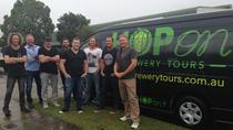 Gold Coast Brewery Tour Including Balter, Burleigh and Black Hops, Gold Coast, Beer & Brewery Tours