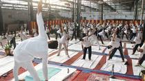Stress Free Living Yoga Tour Em Agra, Agra, Yoga Classes