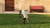 Dubai Falconry and Old Dubai Half-Day Walking Tour, Dubai, Walking Tours