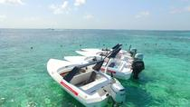 Cancun Speedboat Jungle Tour , Cancun, Snorkeling