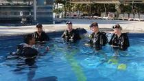 PADI Discover Scuba Diving in Playa del Carmen, Playa del Carmen, Scuba Diving