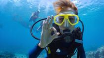 PADI Open Water Diver Course in Playa del Carmen, Playa del Carmen, Scuba Diving