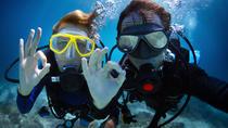 PADI Scuba Diver Course in Playa del Carmen, Playa del Carmen, Scuba Diving