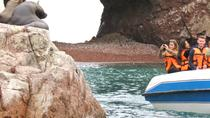 Excursión privada a las islas Ballestas, Paracas, Private Sightseeing Tours