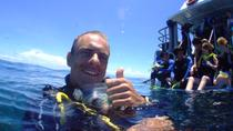 Learn to Scuba Dive on the Great Barrier Reef: 4-Day PADI Open Water Dive Course, Cairns & the...