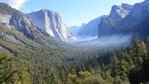 Natural Wonders of Yosemite Tour from San Francisco, San Francisco, null