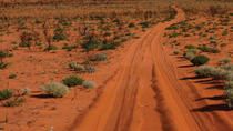 19-Day Canning Stock Route 4WD Expedition from Alice Springs, Alice Springs, Cultural Tours