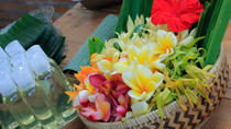 Bali Shore Excursion: Jamu Organic Remedy Workshop, Ubud, Ports of Call Tours