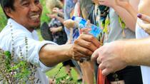 Bali Shore Excursion: Jamu Organic Remedy Workshop