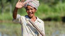 Bali Shore Excursion: Stroll Through Rice Terraces in Ubud
