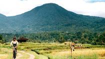 Electric Bike Tour Jatiluwih and Surrounding, Bali, Bike & Mountain Bike Tours