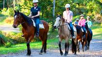 Reittour im Glenworth Valley Outdoor Adventures, New South Wales, Horseback Riding