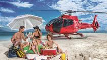 Private Helicopter Tour: Great Barrier Reef Island Snorkeling and Gourmet Picnic Lunch, Cairns...
