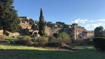 Full day tour, Naples and Pompeii from Rome, Rome, Day Trips