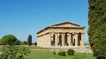 Paestum and Pompeii- Full day tour from Rome, Rome, Full-day Tours