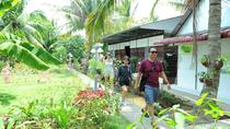Great Experience Mekong Delta 2 Days 1 Night With Tiny Garden Bungalow Homestay, Ho Chi Minh City, ...