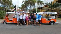 Private Custom Tour: Half-Day Rarotonga Island by Electric Tuk Tuk, Rarotonga
