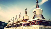 All Inclusive Private Day Tour of Xining including Kumbum Monastery, Dongguan Mosque plus Local ...