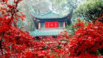 Changsha Private Highlight Day Tour, Changsha, Day Trips