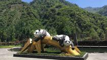 One day tour to Wolong Panda Base and Dujiangyan Irrigation Dam, Chengdu, Day Trips