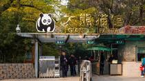 Beijing Day Tour: Hutong, Lama Temple, and Panda Zoo, Beijing