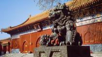 Beijing Day Tour: Hutong, Lama Temple, and Panda Zoo, Beijing, Bus & Minivan Tours