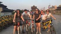 Full Day Small Group Xi'an Essential Tour, 西安