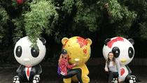Morning Trip of Giant Panda Base in Chengdu, Chengdu, Theme Park Tickets & Tours