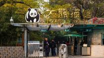 Private Day Tour: Summer Palace, Beijing Zoo, Lama Temple and Hutong