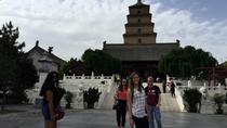Private Tour of Shaanxi History Museum and Big Wild Goose Pagoda in Half Day, Xian, Historical &...