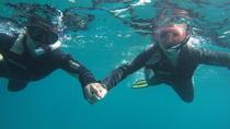 Guided Tenerife Snorkeling Trip, Tenerife, Snorkeling