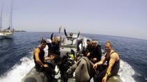 PADI Scuba Diving Courses in Tenerife: All Specialities Until Divemaster, Tenerife, Scuba Diving